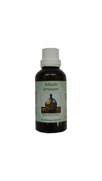 Spagyrik Bärlauch Tinktur (Allium ursinum) 50ml