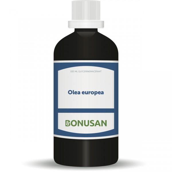 Olea Europea 100ml